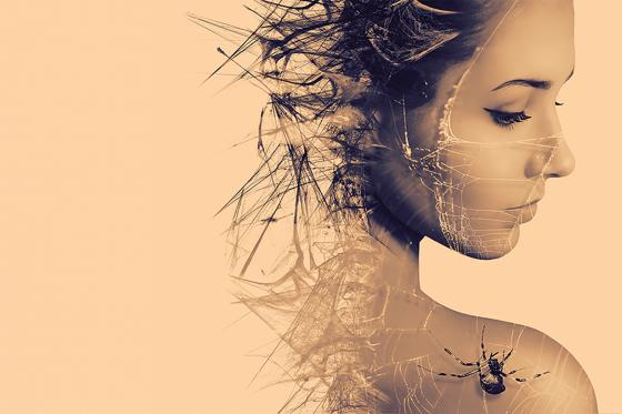 Kiss of the Spider Woman Image